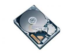 ST3300655LC- 300GB DELL